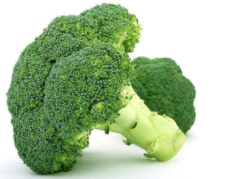 broccoli vegetable food