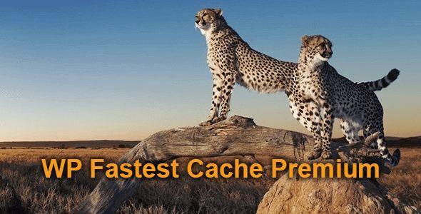 WP fastest cache best wordpress plugin